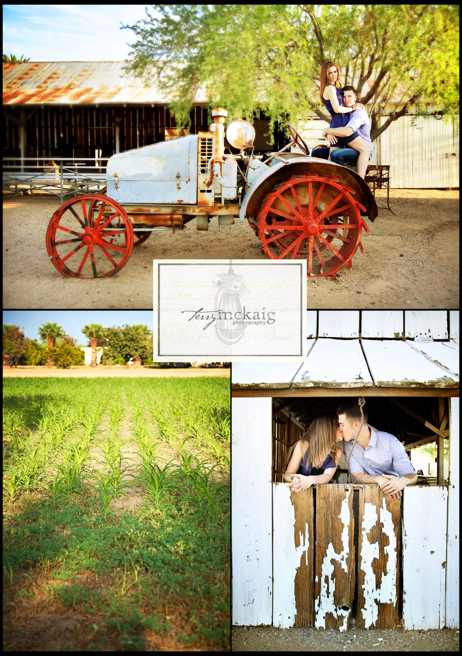 farm engagement phoenix engagement photographer