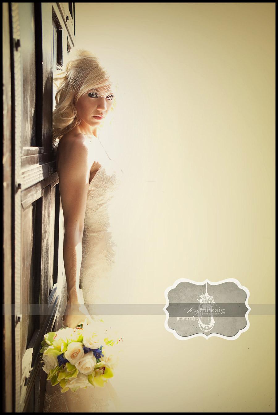 Vintage bride magazine style photography Phoenix AZ