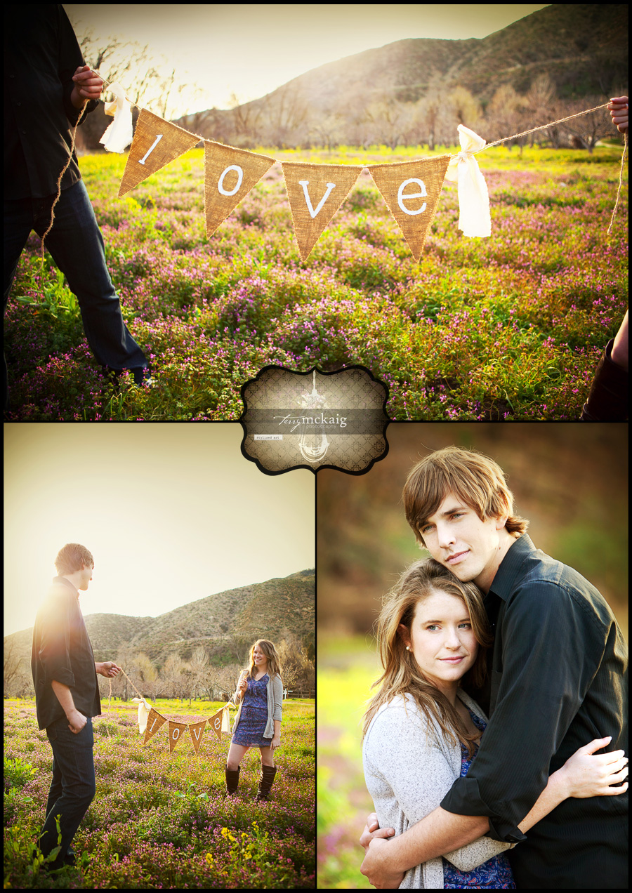 country engagement phoenix engagement photographer