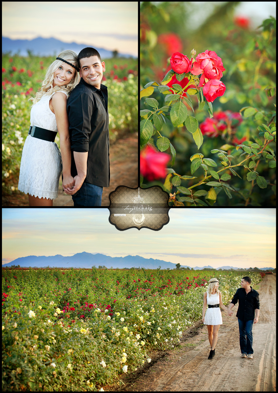 country engagement roses phoenix wedding photographer