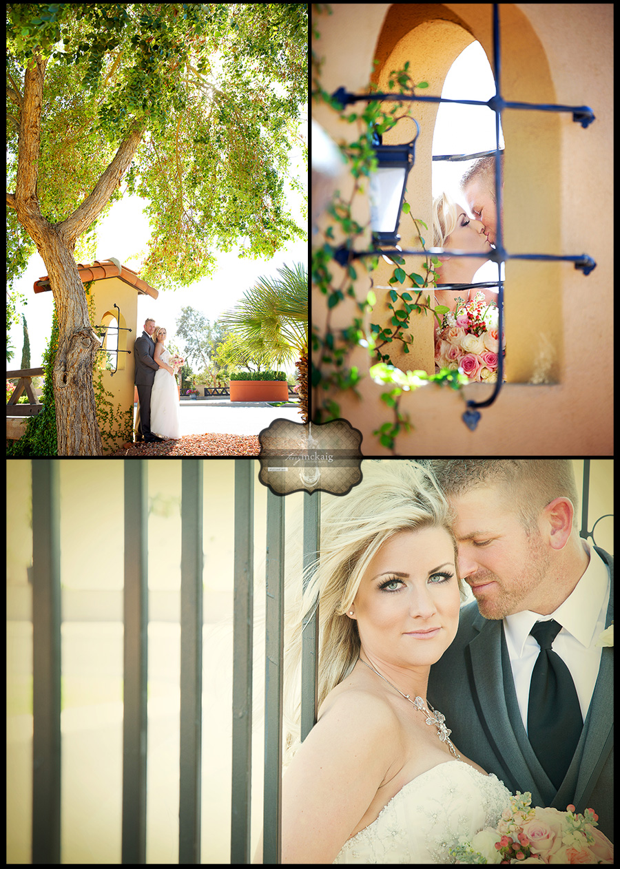 Romantic desert wedding Terry McKaig photography Phoenix Wedding Photography
