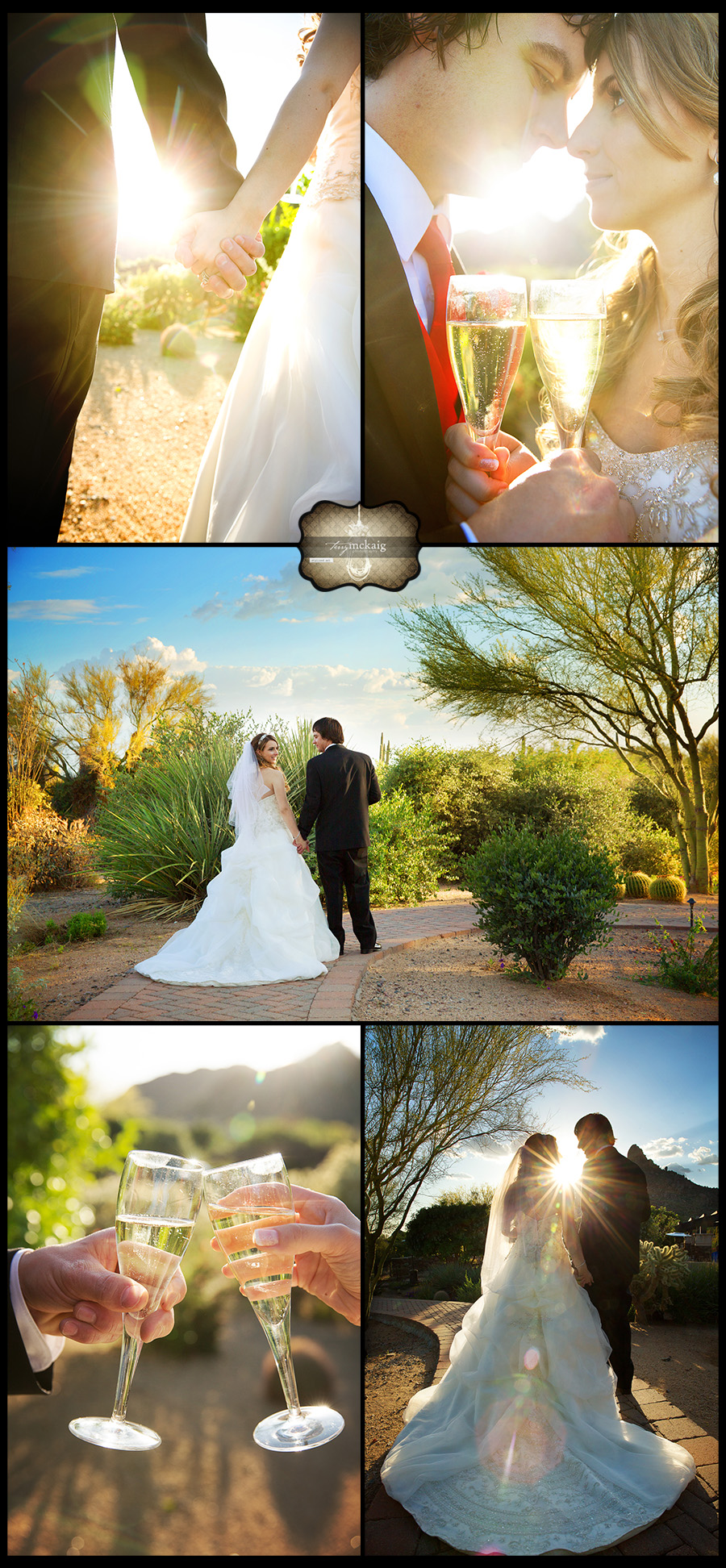 Sassi Scottsdale romantic desert wedding Terry McKaig Photography