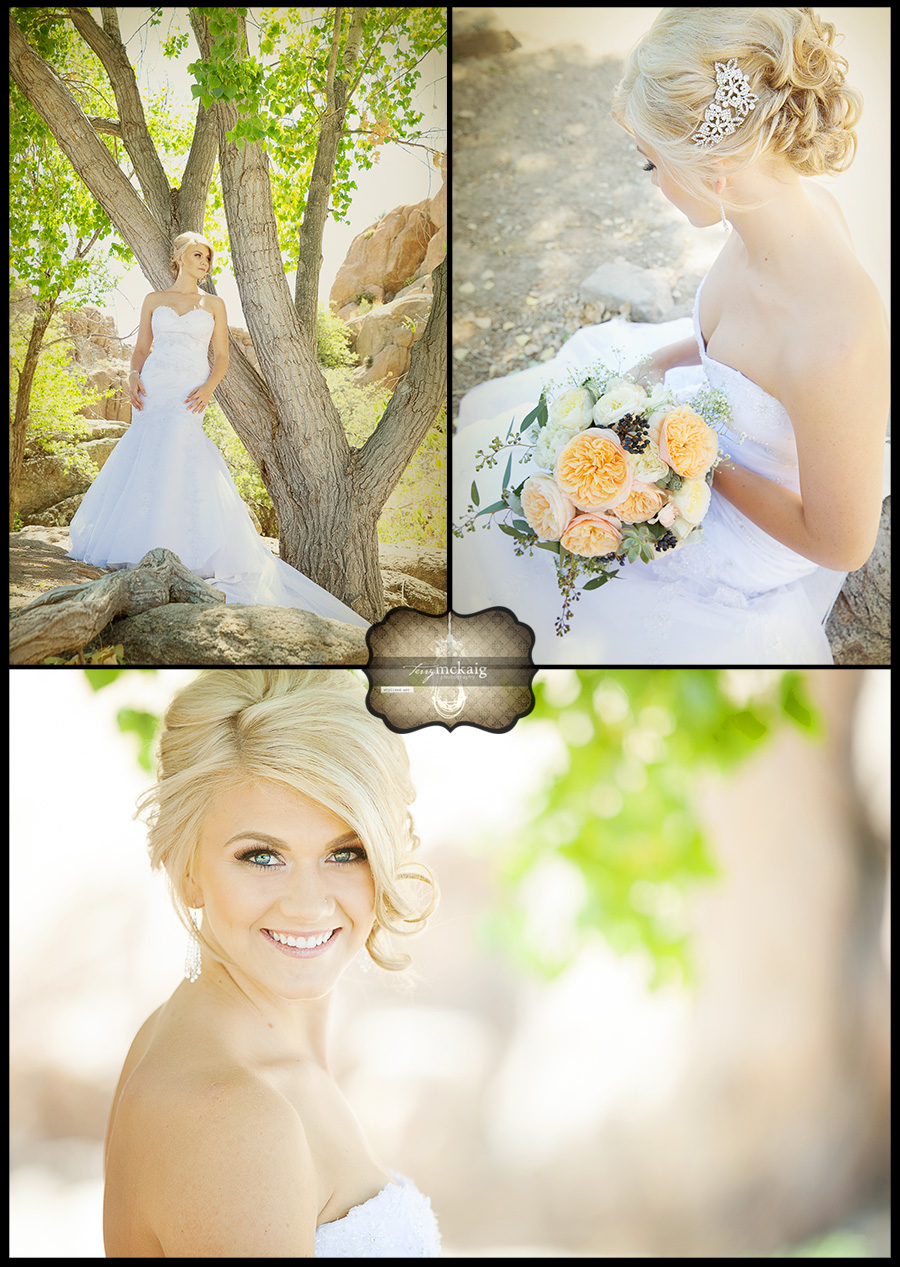 bridals prescott wedding lake wedding Terry McKaig Photography